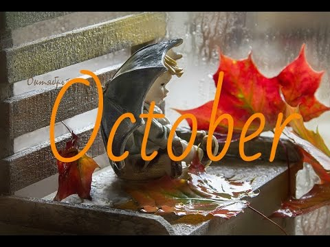 ОСЕНЬ Октябрь Тихий шёпот Дождя ~ AUTUMN October ~ HD