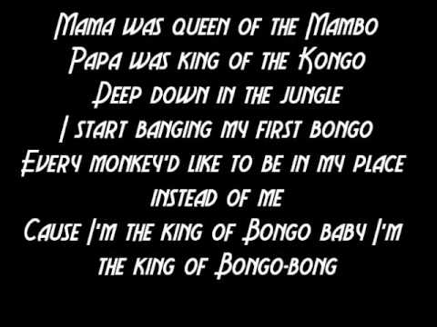 King Of The Bongo - Manu Chao - Lyrics