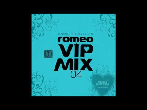 DJ Romeo - If you wanna be rich